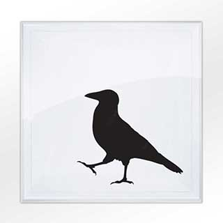 Crow Greetings Card