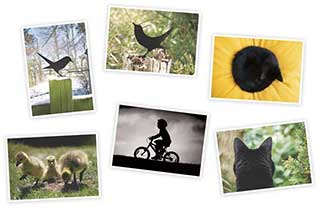 6 x Litho Art Postcards