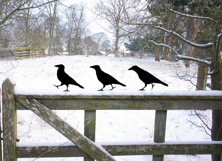 Raven Brothers Garden Metal Birds (x3)