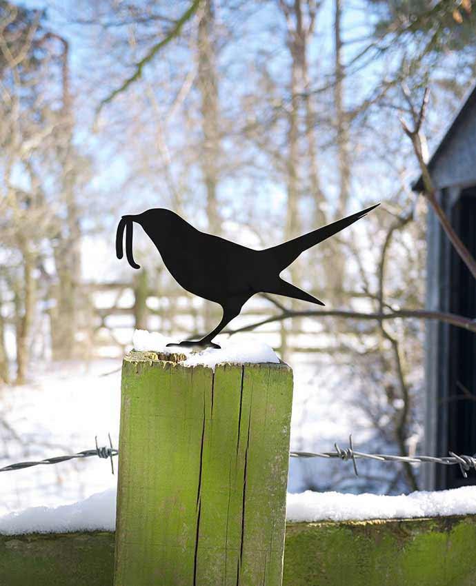 Garden Bird Yard Art Catches Worm