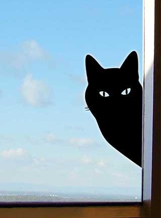 Peeping Tom Cat Wall or Window Sticker