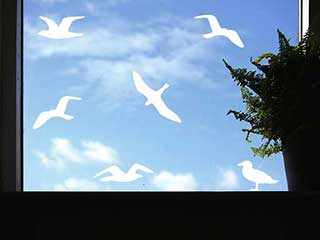 Circling Seagulls Wall or Window Stickers